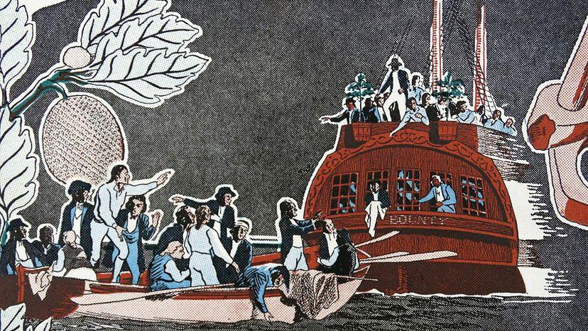 Mutiny on the Bounty, breadfruit