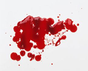 What can some little drops of blood tell us about a crime?