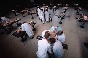 Medical students dissect cadavers in an operating room at the Ecole de Medicine in Paris, 1988.