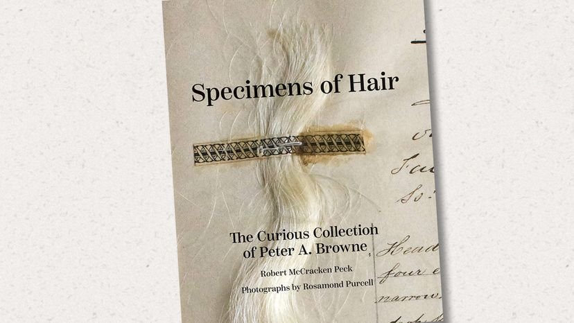 Peter A. Browne, hair collection