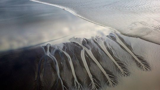 Tidal Bores Are Rare, Fast and Have Epic Waves