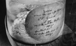 Mathematician Carl Fredrich Gauss's brain preserved at Gottingen's Institute for Geophysics