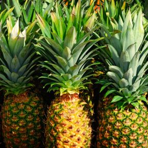 Bromelain, which is found in pineapple, is a popular nutritional supplement.