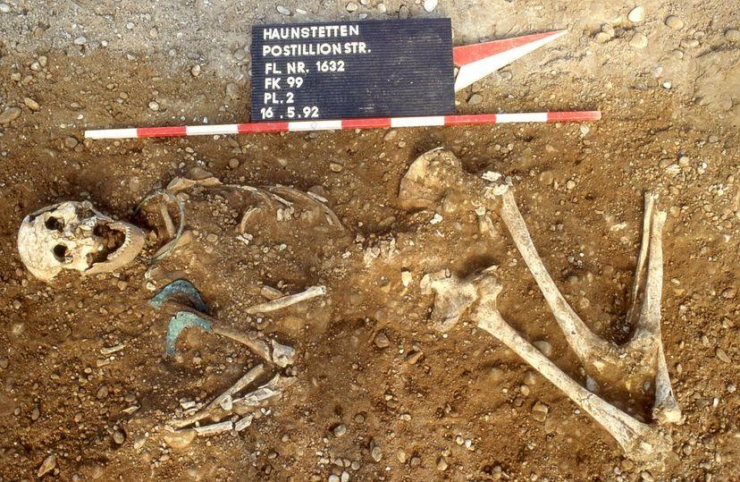 archaeological dig, germany, bones, human remains