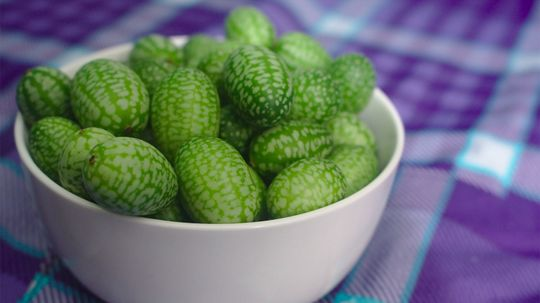 Cucamelon: Not the Love Child of a Cucumber and a Watermelon