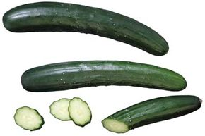 There are many varieties of cucumber available to home gardeners.