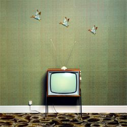 Image Gallery: Evolution of TV Nope, we don't miss it. Not the rabbit ears, not shuffling through the guide to see what's on and certainly not getting up off our bums to change the channel. See more pictures of TV's evolution.