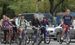 Tourists on bikes amid the traffic in Berlin.  How do you stay safe when cycling in the city? See more sports pictures.