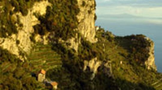 Ultimate Guide to the Campania Wine Region