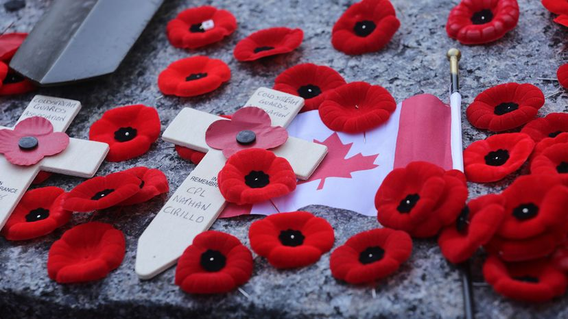 Poppies lie on the Tomb of the Unknown Soldier