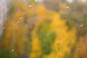 You don't have to get wet to take a great photograph. Stay dry inside your home, as water beads and streams down a windowpane.