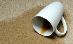 Be mindful of stain warranties.