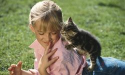 Kids love playing with kittens.