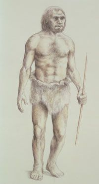 Artist's rendition of a Neanderthal man