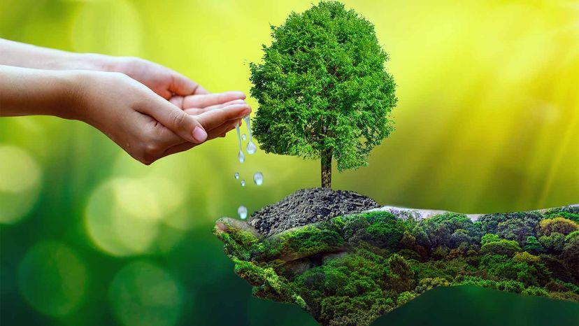 Earth Day conceptual