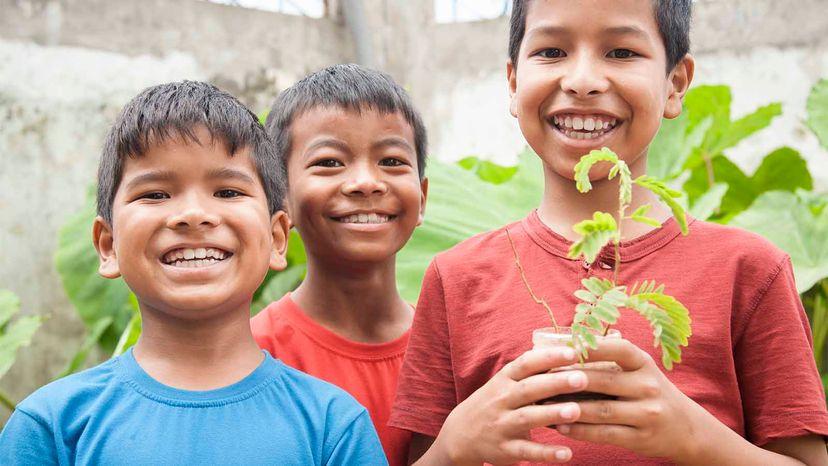 boys holding tree sapling