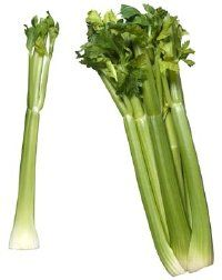 Celery is the most common color of celery varieties.