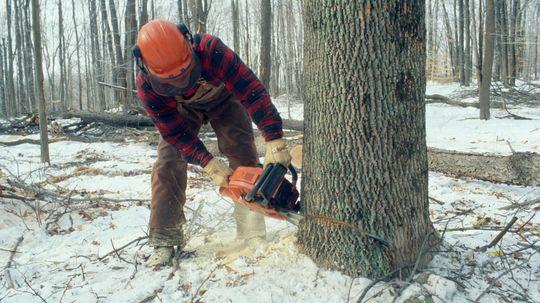 How Chain Saws Work
