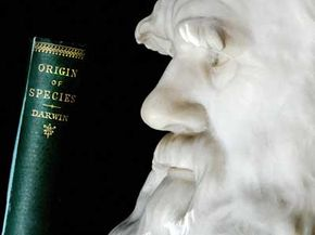 """A bust of Charles Darwin immortalizes his features, just as his book """"On the Origin of Species"""" immortalizes Darwin's name."""