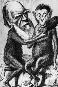 This 1860 London Sketchbook illustration typifies the criticism Darwin's theory received.