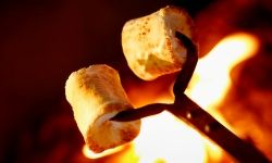 A good camping meal needs to provide lots of energy and be easy to cook. Think outside the marshmallow!