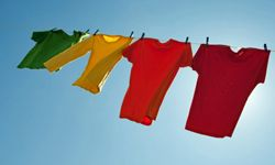 The sun will do wonders for your moldy clothes.