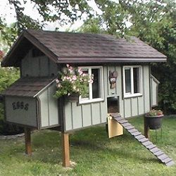 An elevated floor plan makes this coop easy to clean and collect eggs.