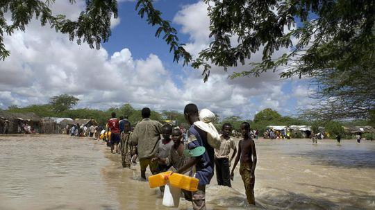 How Refugee Charity Organizations Work