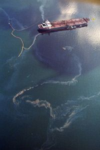 The crude oil that leaked from the tanker Exxon Valdez caused immense environmental damage.