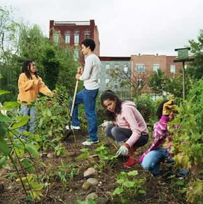 Neighbors working in their community garden can see the city in the background.