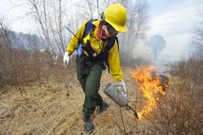 Lynn Wolfe uses a drip torch to light dry grasses to burn a section of Maine's Rachel Carson Wildlife Refuge. Burning the ground cover in the state's wildlife refuges is done on a five-year cycle and encourages the growth of plants like Beach Plum.