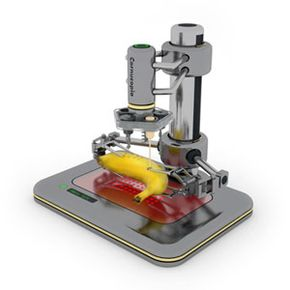 The Robotic Chef can apply a variety of cooking techniques to food items that already exist, such as a piece of fruit or a steak.