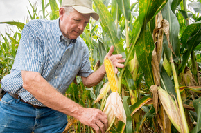 There are lots of farm-specific rules that don't apply to other businesses.