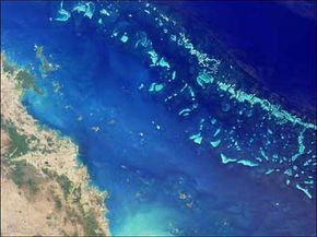 The Great Barrier Reef can be seen from outer space in this satellite photo. You can see the diagonal lines of the reef along the right-hand side of the picture.