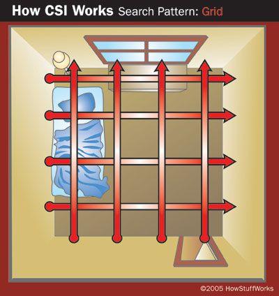 Grid search in a crime scene investigation