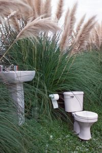A dual flush toilet can help to make your bathroom more environmentally friendly. See more green living pictures.