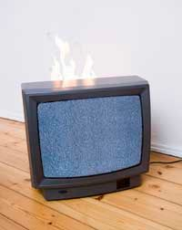 Flame retardants keep your TV from bursting into flames and also can cause developmental problems in animals.