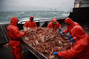 Crab sorting is such a quiet time.