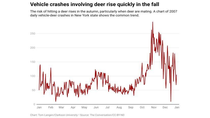 deer crashes