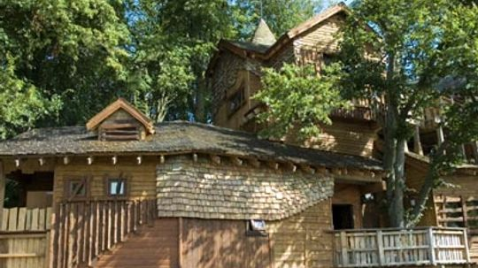 Ultimate Guide to Designer Tree Houses