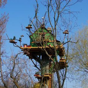Take every safety precaution you can when building your tree house, especially if you're going this high.