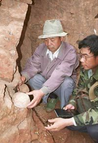 Wang Zhenghua (left), curator of a local museum, and Wang Fangchen, a scientist from Beijing, remove a fossilized dinosaur egg from a mountainside in Yunxian in central Hubei province.