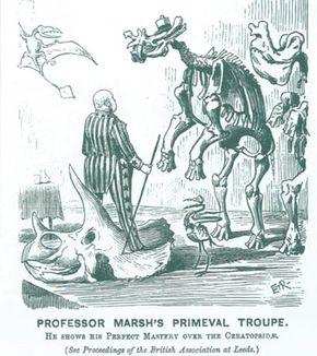 Cartoon of Marsh from Punch, 1890