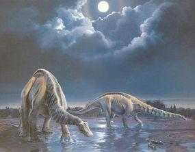 Marsh described Apatosaurus in 1877