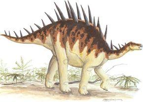 Dacentrurus Armatus