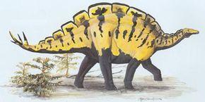 Wuerhosaurus homheni