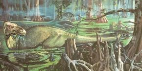 The duckbilled dinosaur Edmontosaurus wades through a swamp searching for food. The duckbilled dinosaurs had the most efficient jaws for chewing plants, and they became the most successful plant-eaters. See more dinosaur images.
