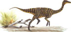 Garudimimus brevipes See more dinosaur images.