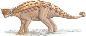 Pinacosaurus grangeri. See more dinosaur images.