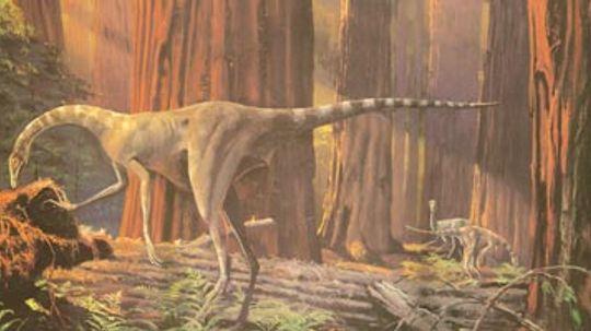 Dromiceiomimus